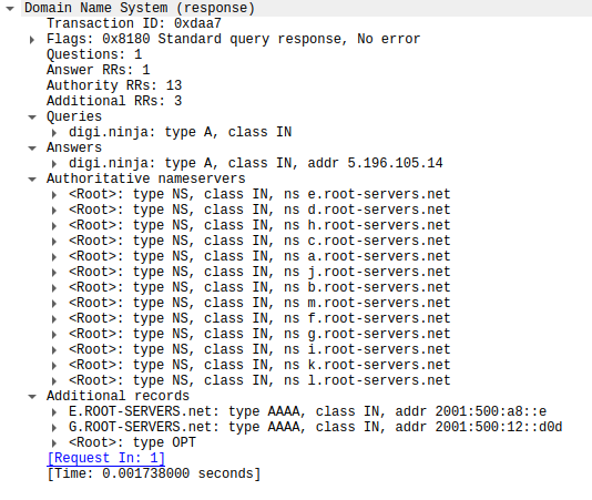 A packet capture of the response do a DNS request from a normal DNS server showing the various sections of a DNS response